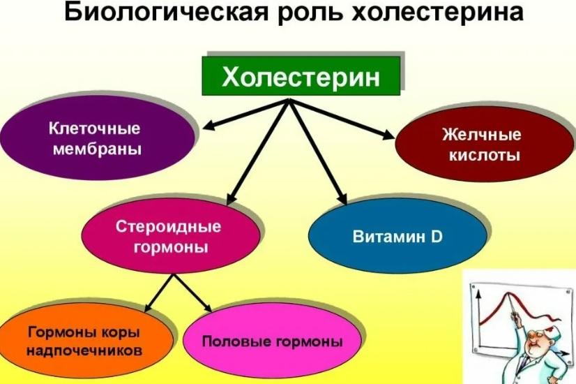 Лецитин НСП